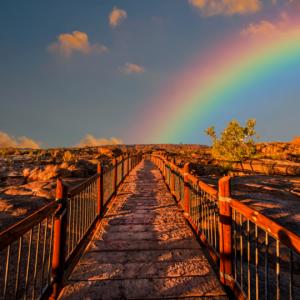 Your path to Abundance